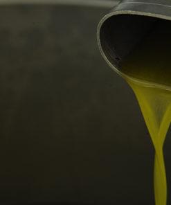 Vino e olio